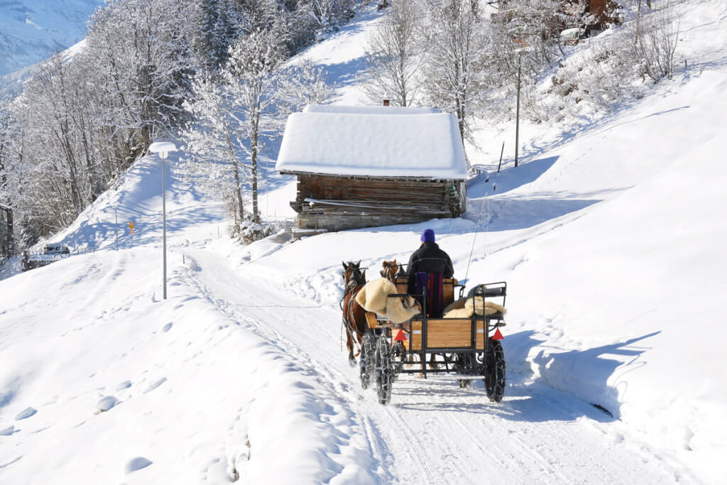 winter holidays skiing holidays in wagrain salzburger land. Black Bedroom Furniture Sets. Home Design Ideas