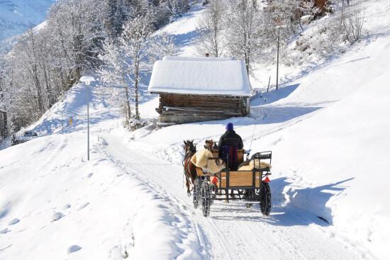 Pferdeschlitten fahren Winterurlaub Salzburger Land Wagrain Moabauer